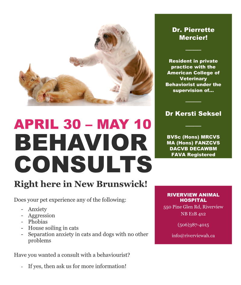 RAH Behaviour Consults